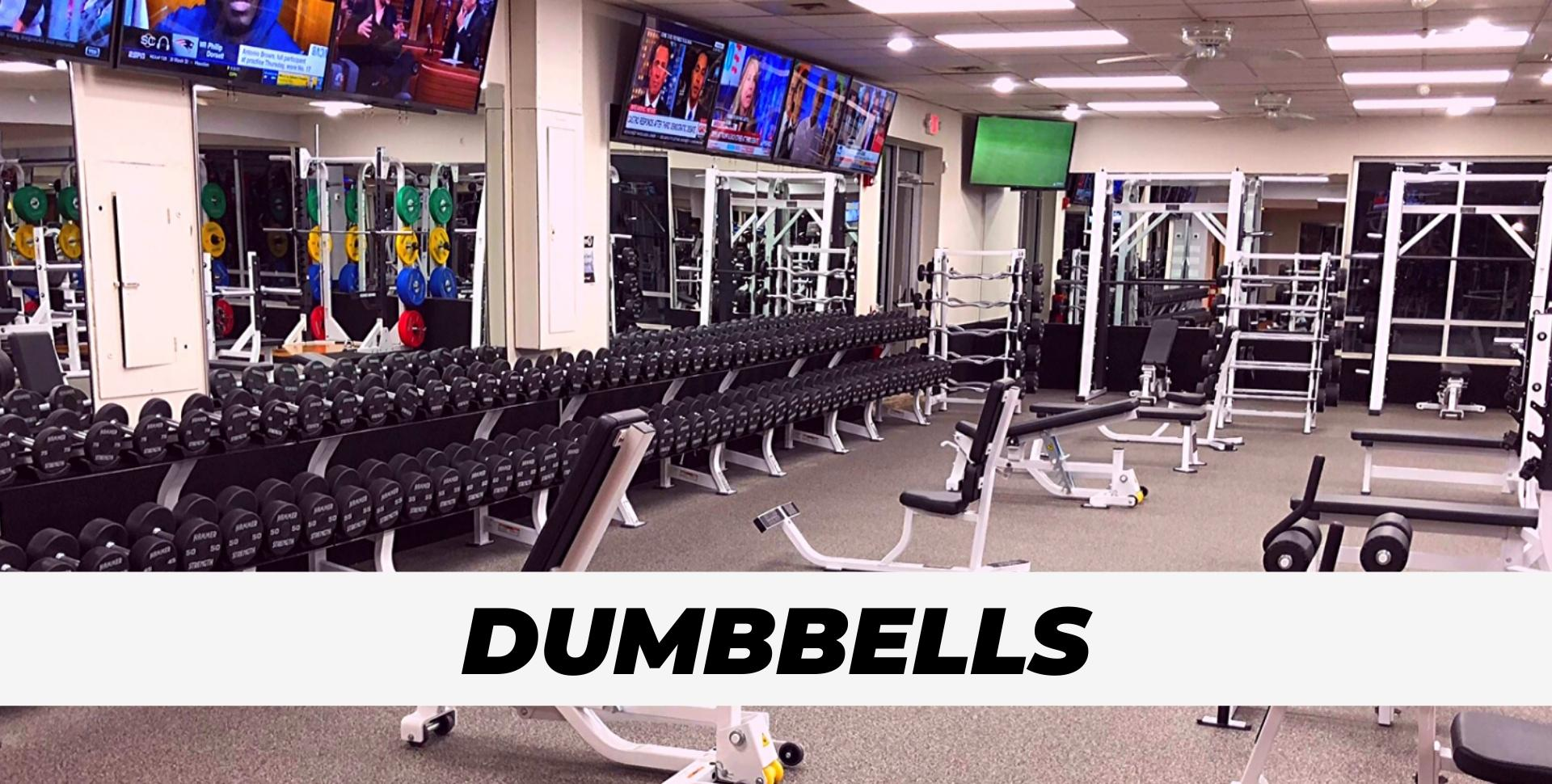 Dumbbell free weights at gym for Portfolio Pic